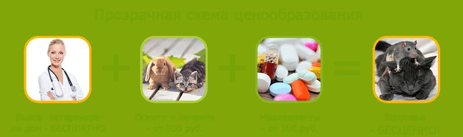 Вызов ветеринара на дом бесплатно