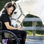 Иппотерапия или ход конём