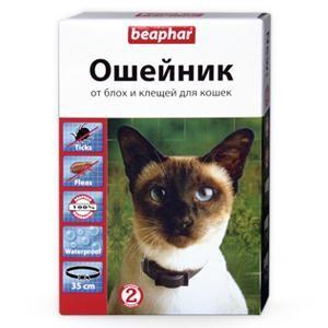 Oshejniki-protiv-parazitov-u-koshek