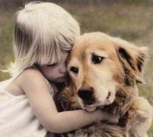 Отказ задних лап у собак - симптомы, причины и первая помощь