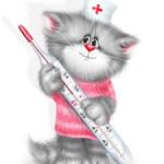 Кошачий грипп или респираторные инфекции верхних дыхательных путей (URI) у кошек и котов — причины, группы риска, симптомы, диагностика, лечение, профилактика