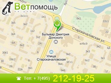 Ветеринар на дом Бульвар Дмитрия Донского