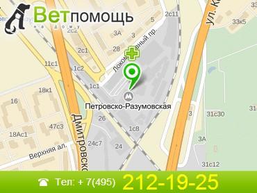 Ветеринар на дом Петровско-Разумовская