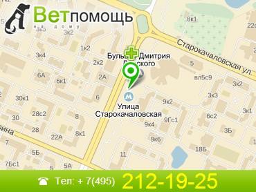 Ветеринар на дом Улица Старокачаловская