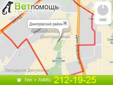 Ветеринар на дом Дмитровский район