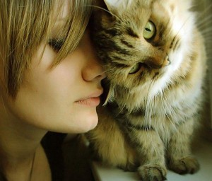 Как кошки умеют лечить