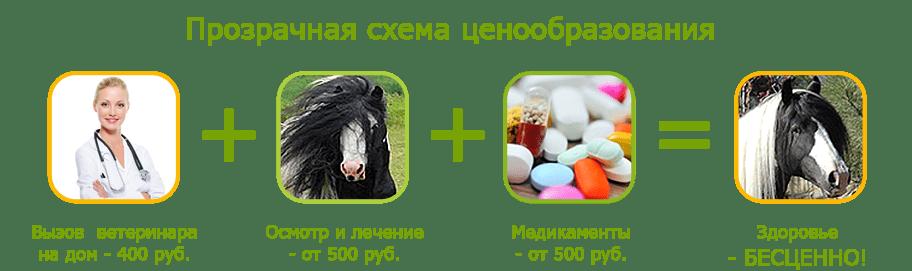 Лечение лошадей